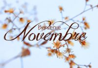 Revue de presse Novembre