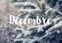 Newsletter décembre 2020