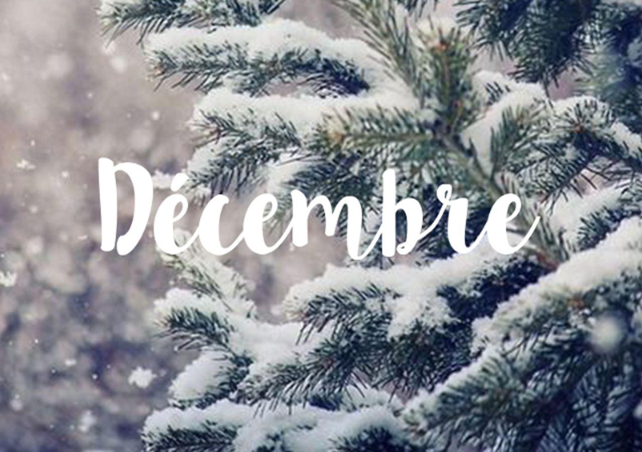 Newsletter Unss Academie Nancy Metz Decembre 2020